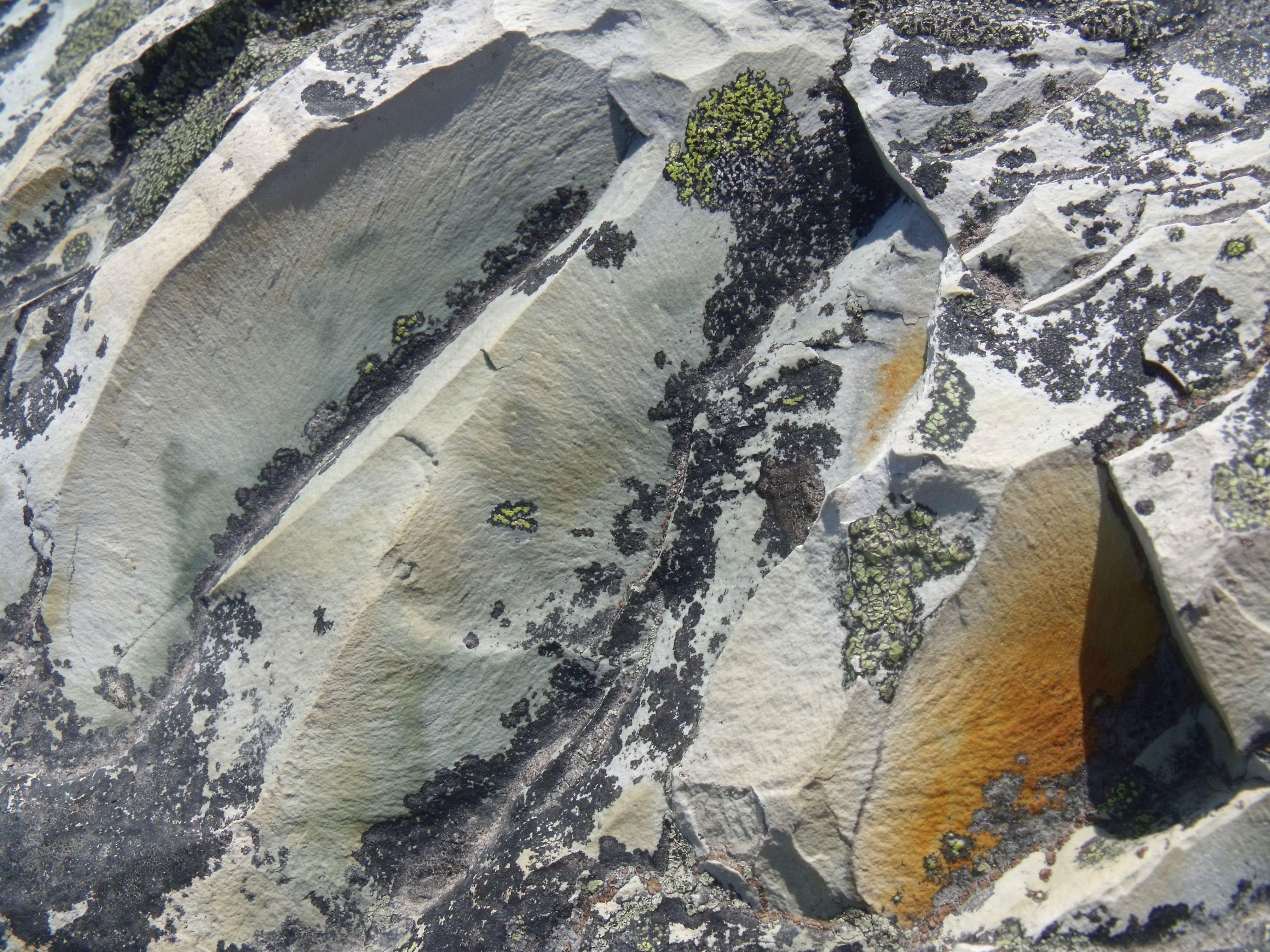 rockonrock1568
